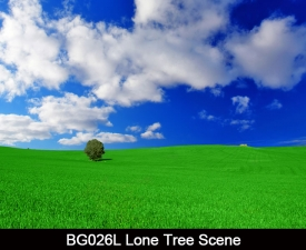 BG026